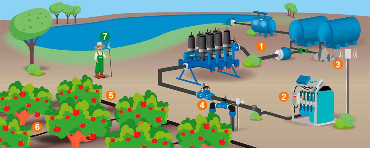 Системы полива деревьев